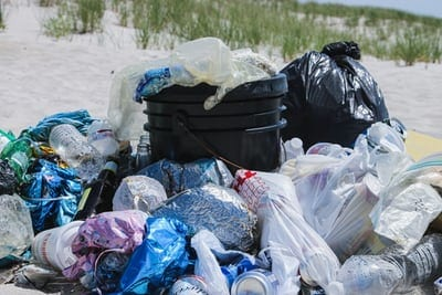 Effects Of Plastic Pollution On Marine Life
